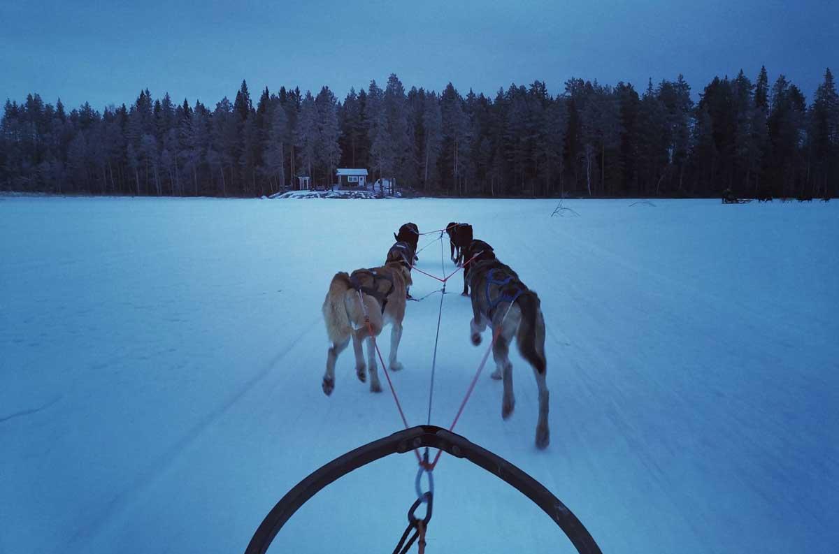 Incentivereis naar Zweeds Lapland